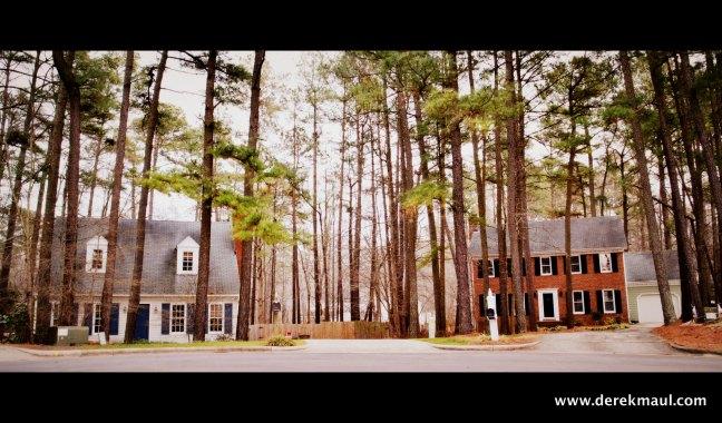 The new Maul-Hall landscape on Elmwood Ct