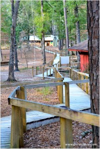 boardwalks to the cabins