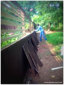 Rebekah rebuilding the fence