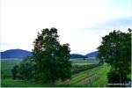beautiful vally