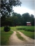 Farm near Bunn