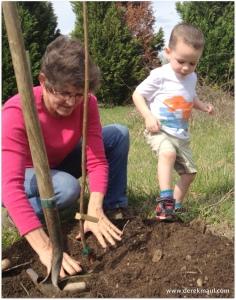 David presses in the soil