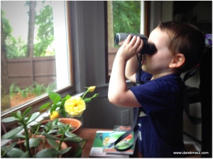 checking out my binoculars
