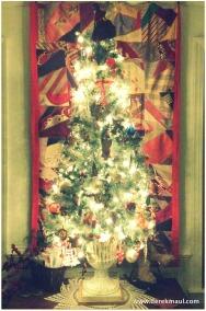 Last light of Christmas Day