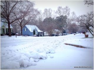 our beautiful neighborhood