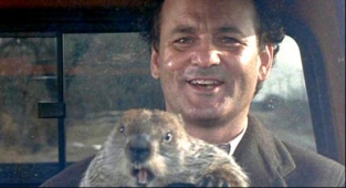 bill-murray-groundhog-day-iata