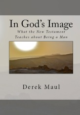 BookCoverPreview - In God's Image