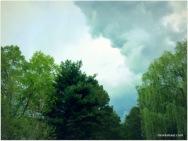 afternoon rains