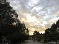 Tyler Run skies