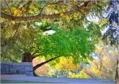Maymont Park