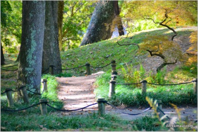 more pathways