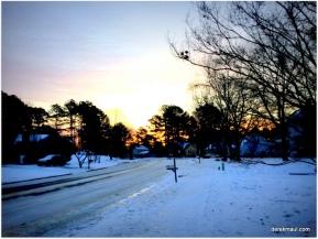 Tyler Run - last morning of the deep freeze