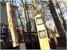 suet in the woodpecker feeder