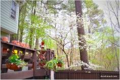 spring at Maul Hall