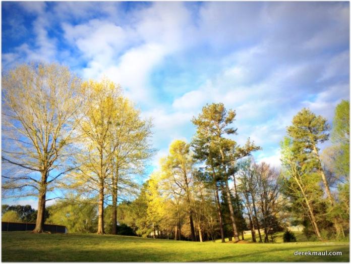 Wake Forest, North Carolina