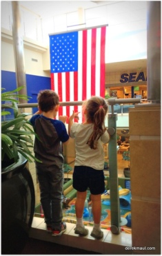 they love the flag
