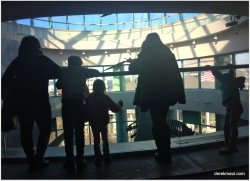 looking out at the exhibit