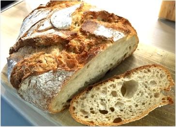 Bread - Dresden