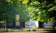 Pilnitz castle grounds