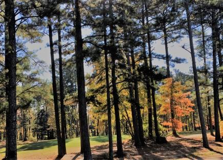 Brevofield Golf Course