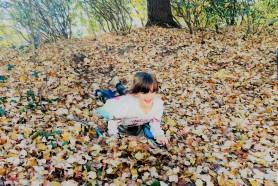 Beks sledding the leaves