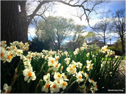 March - Spring begins