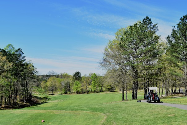 #7 tee and fairway (dogleg left)