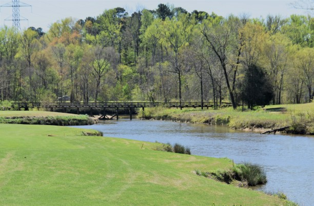 #9 fairway - dogleg right and across water