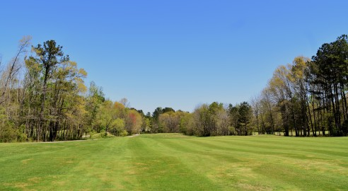 #14 fairway looking back to tee