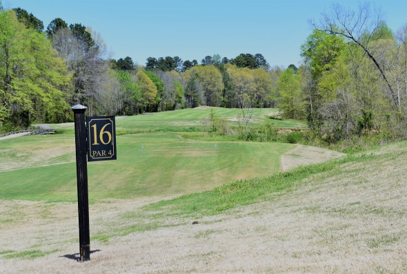#16 fairway - long par 4
